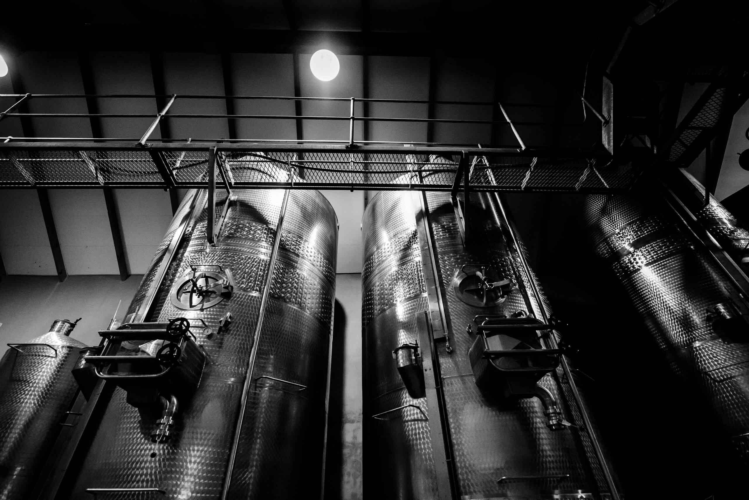 cellar-&-vineyard-2